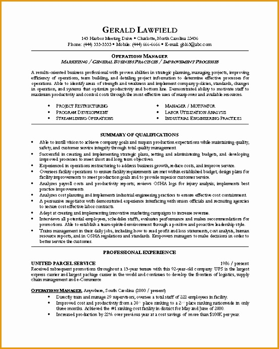 executive resume template691552