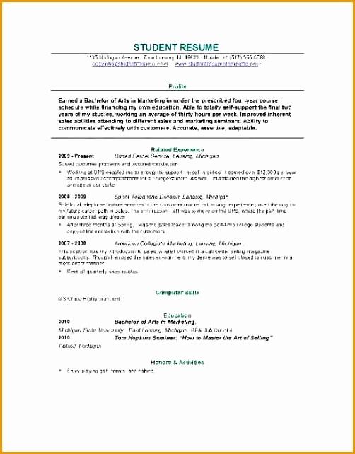 6 self employed resume example