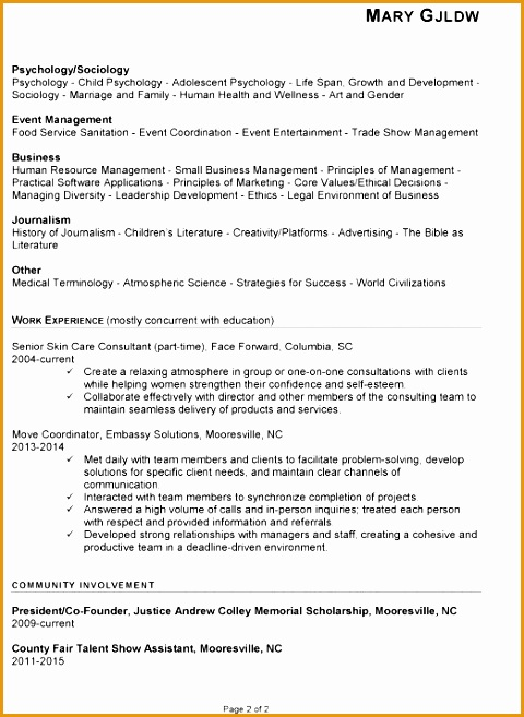 chronological resume example human services657480