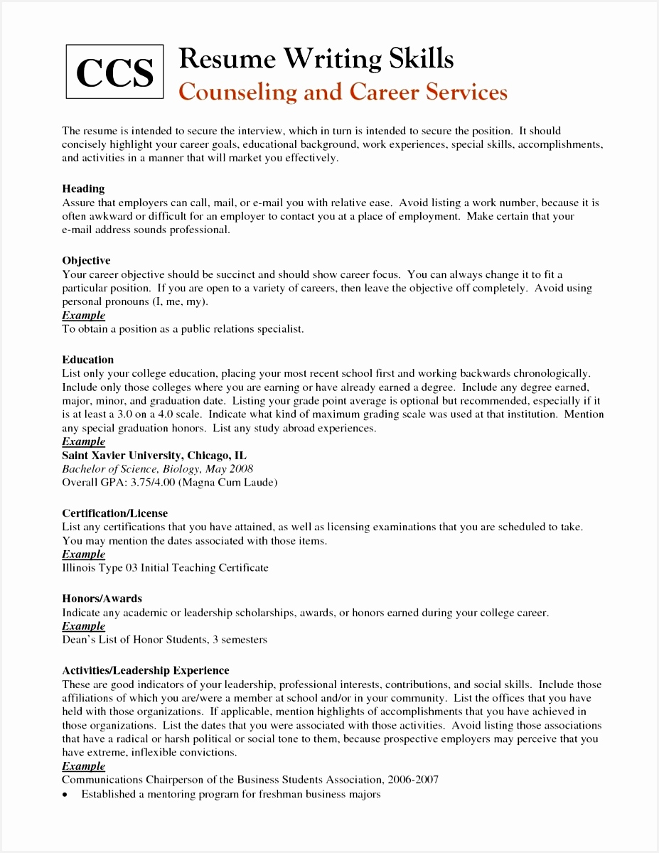 The Resume Place Best Make A Resume Basic Resume Template New Ivoice Template 0d Example1200927