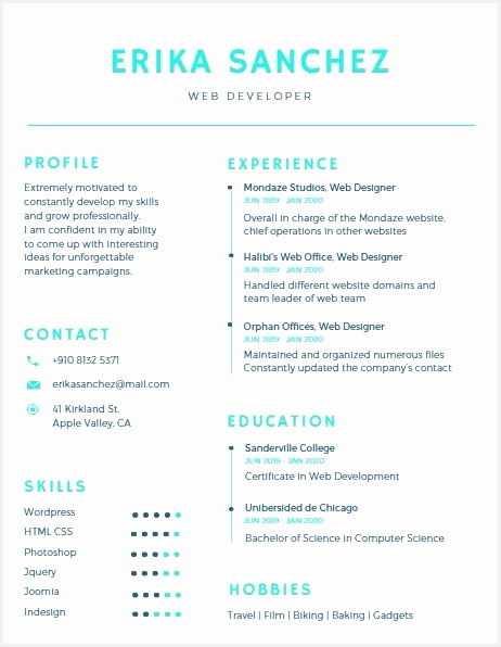 Canva $1 Resume template596462