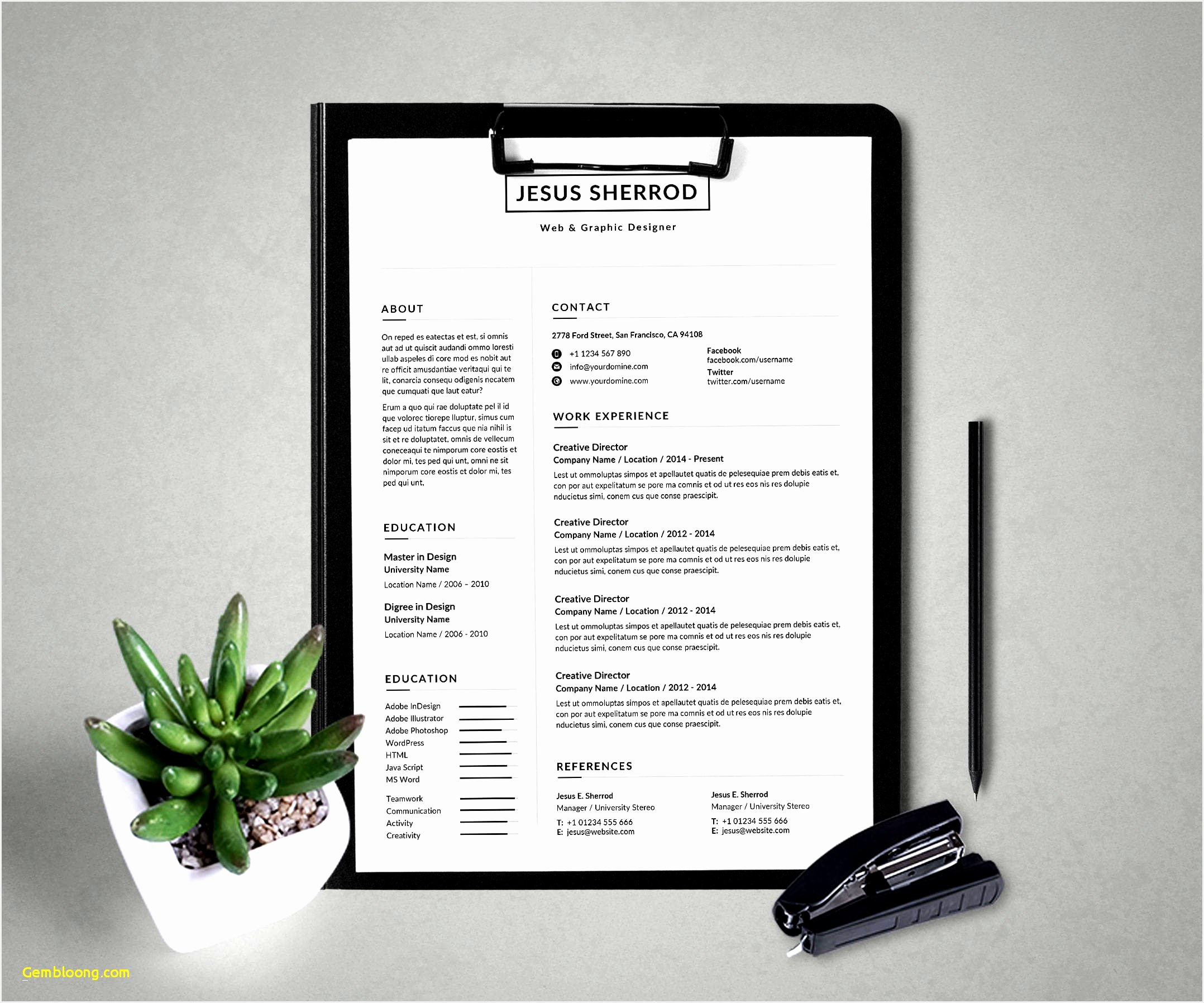 Clean Resume Template Word Download Professional Resume Templates for Microsoft Word New Creative Resume17962156