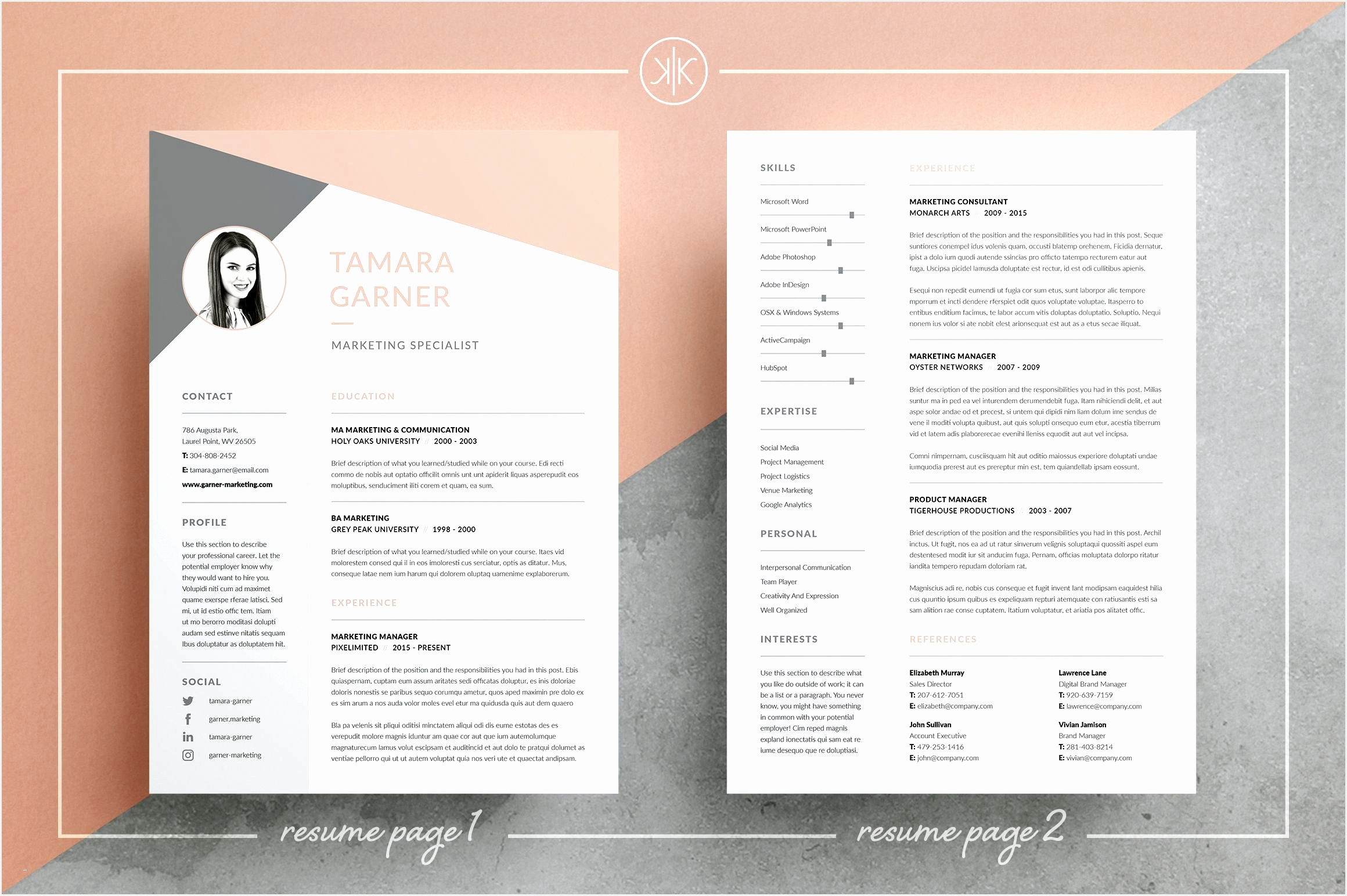 Professional Resume Templates for Microsoft Word Incredible Resume Cv Tamara15442320