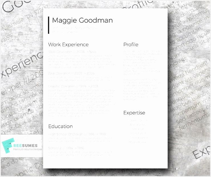 Free Classic and Sleek Resume Template620740