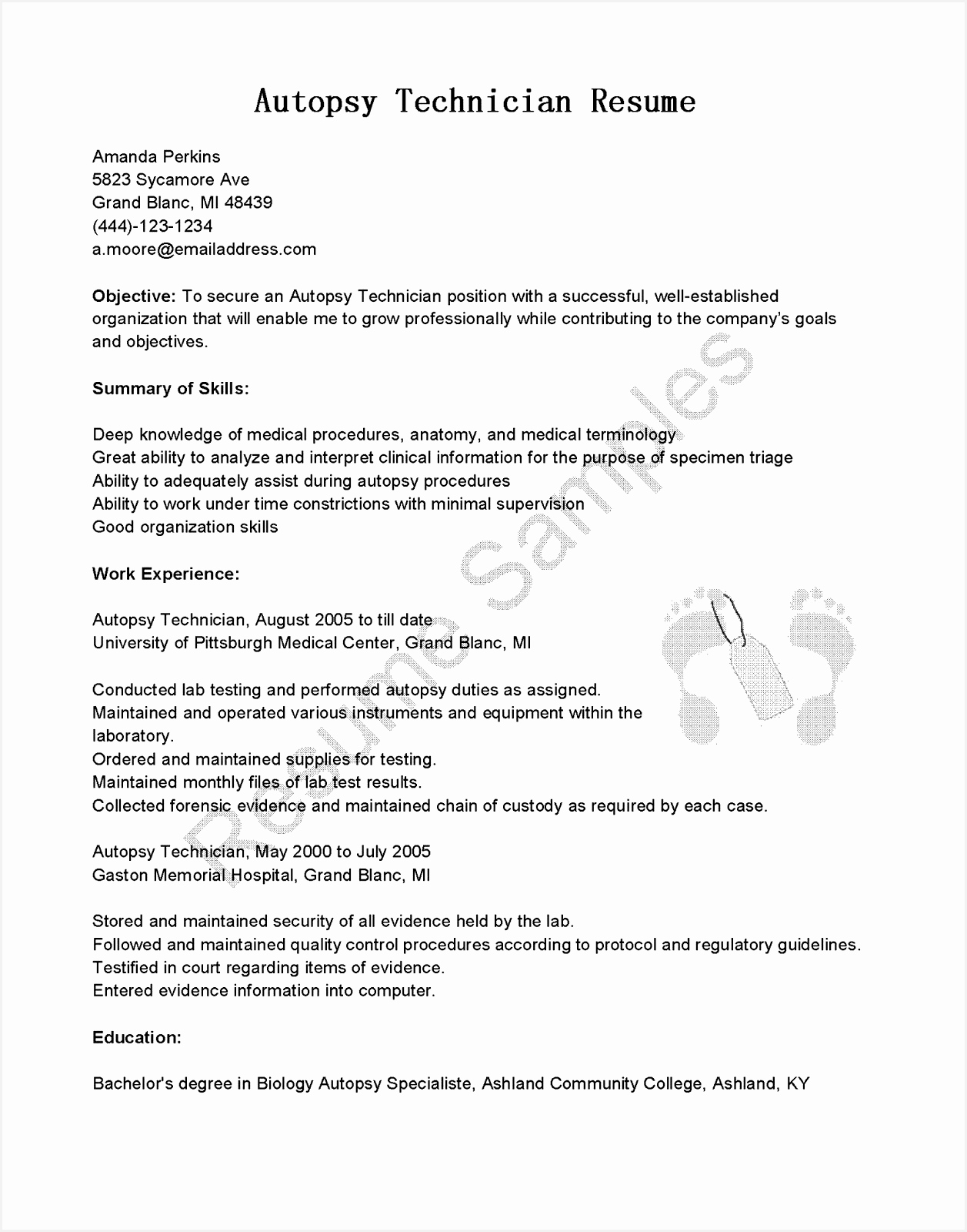 Pr Resume Template Elegant Dictionary Template 0d Archives Free16001257
