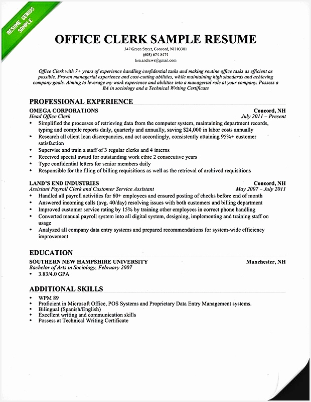 How to Write A Usajobs Resume Federal Government Resume Template Best Bsw Resume 0d800620
