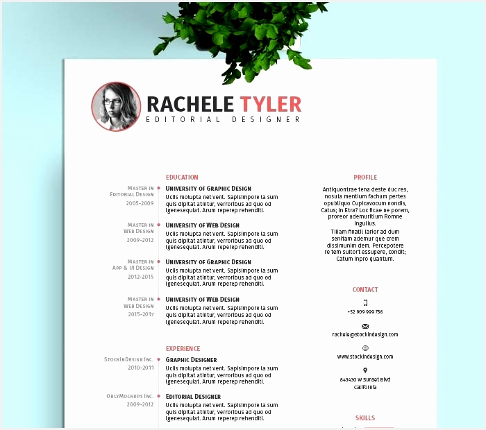 Free Indesign Resume Template620700