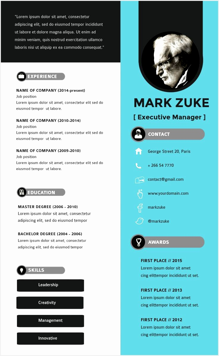 Professional resume cv template layout for business and career Infographic resume templates available in Visme1196736