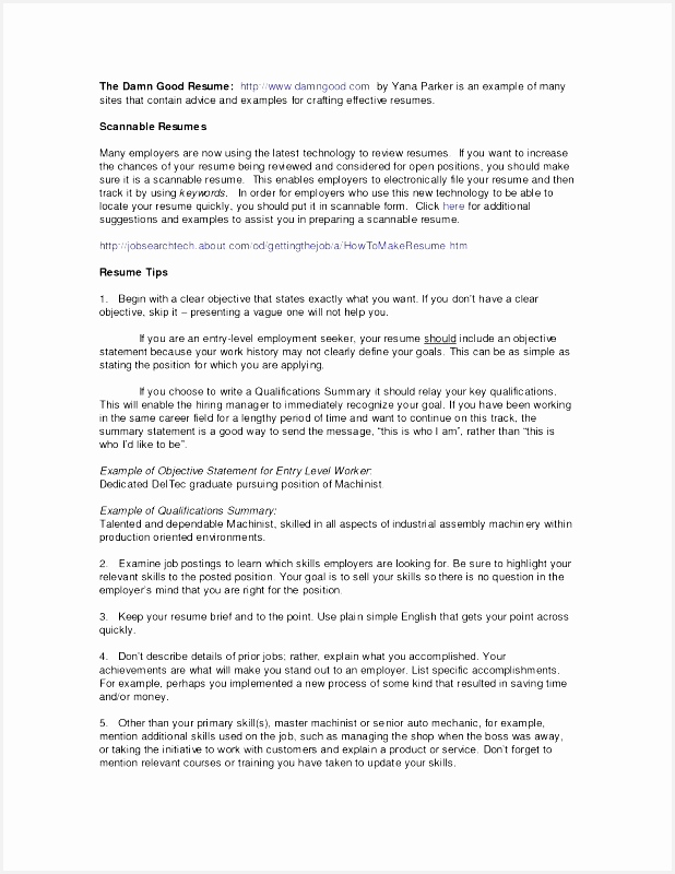 Resume Summary Examples Elegant Resume Summary Example800618