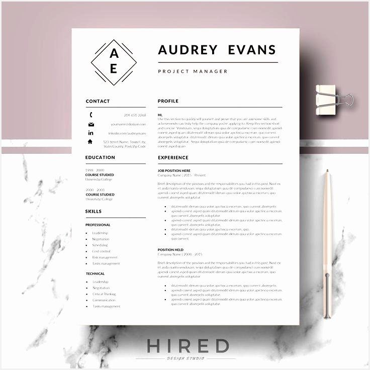 Professional Resume CV Templates for Word Modern & Creative Resumes for Mac Pages Resume Cover Letter References tips736736