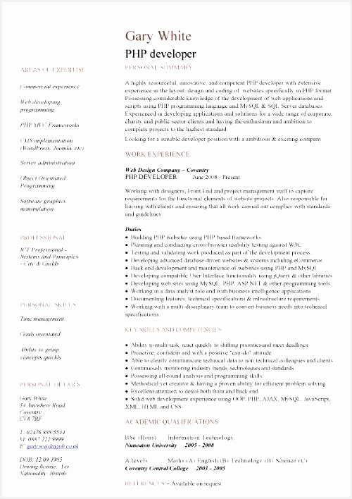PHP developer CV708500