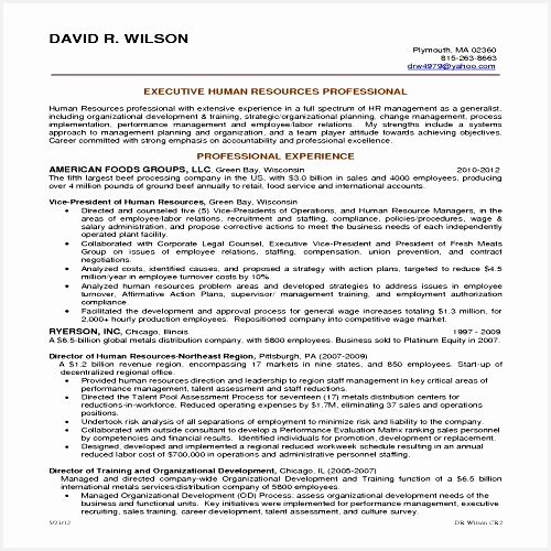 Functional Resume Template Word New Professional Letter Template In Word 2007 Copy Resume Objective for500500