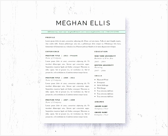 Professional CV Template CV Template for Word Creative Resume Template Curriculum Vitae Professional Resume461570