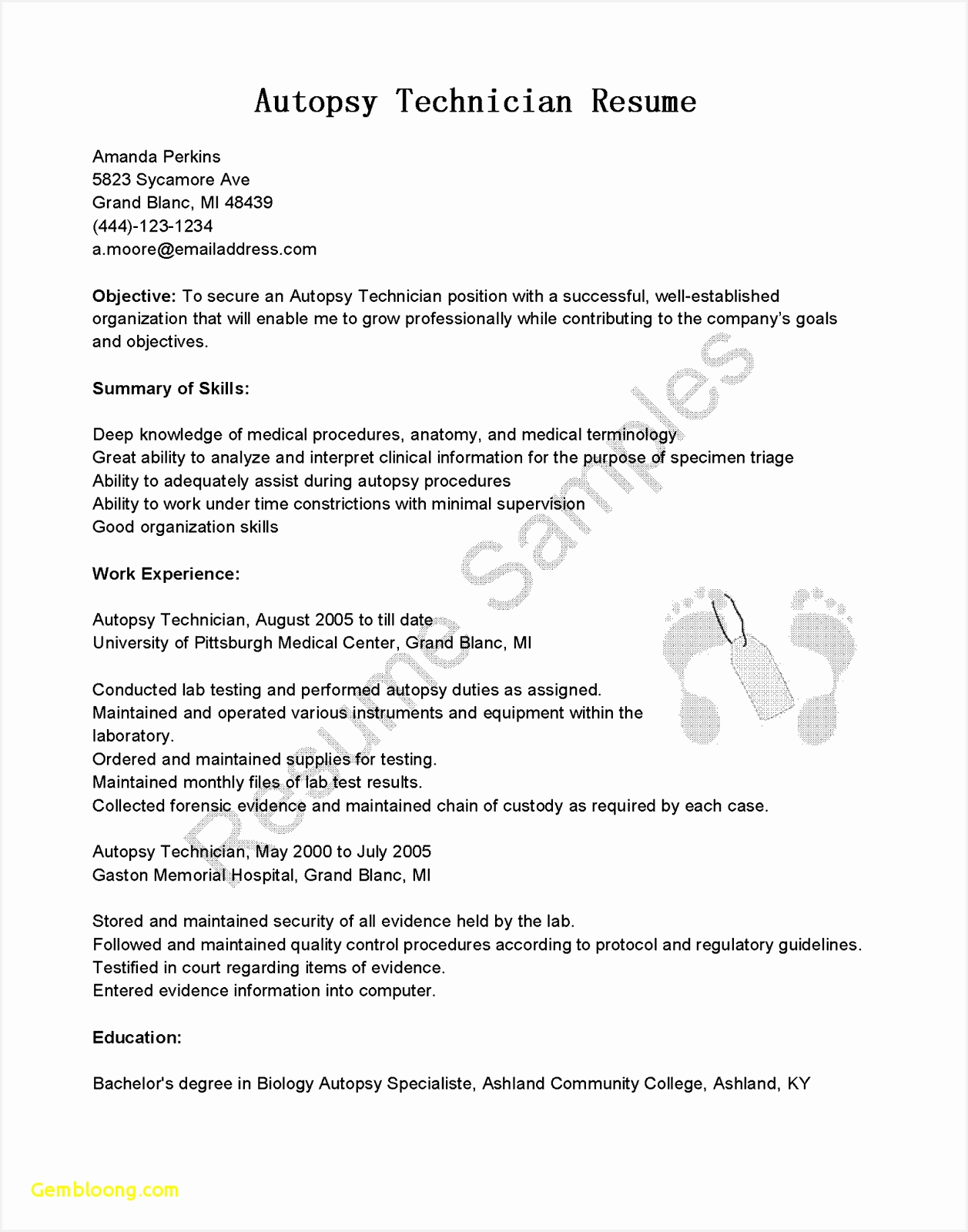 Medical Resume Template Fresh Resume In Microsoft Word New Executive Resume Templates Word Od16001257