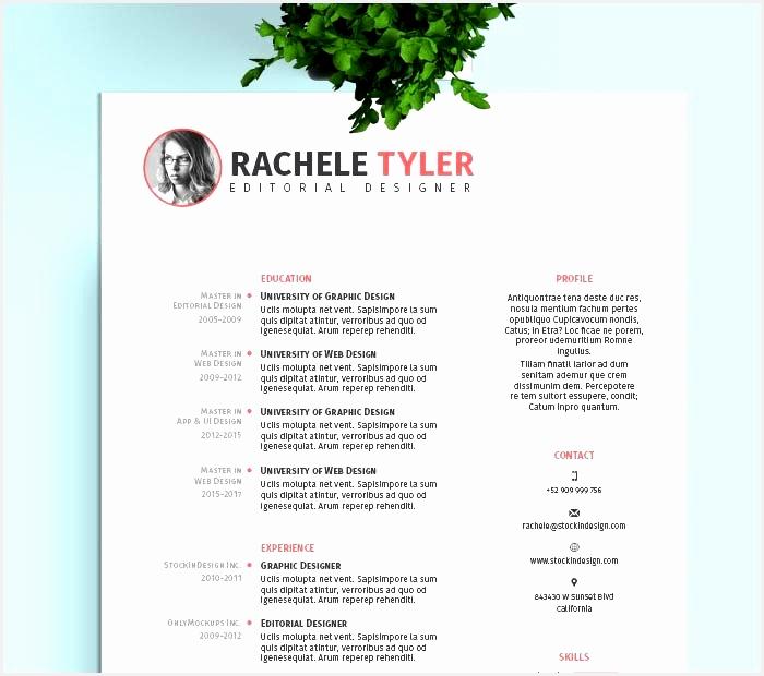 Curriculum Vitae Design Template Free Download – millbayventures620700