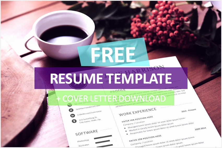 free resume template and cover letter567850