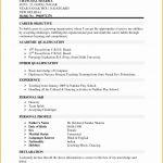 5 Cv Template Word Graduate