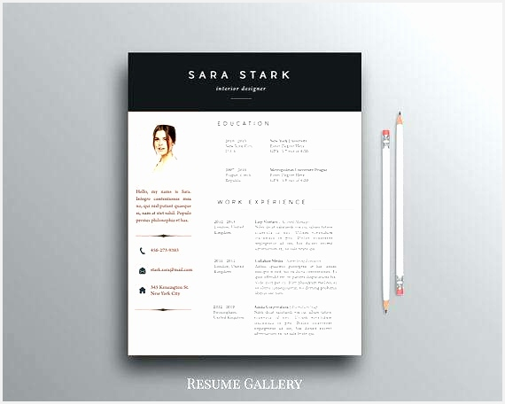 stylish design creative resume templates free for microsoft word resume word template microsoft word456570