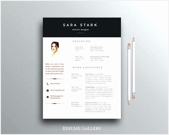 stylish design creative resume templates free for microsoft word resume word template microsoft word456570