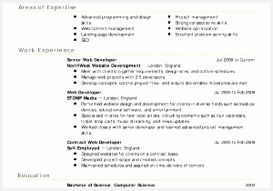 Professional Resume Cv Template with Contents A Professional Resume Camelotarticles210300