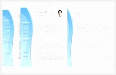 CV Template • CV Template Package Includes Professional layout for 2 pages CV153236