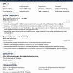 10 Professional Cv Template Word Free Download