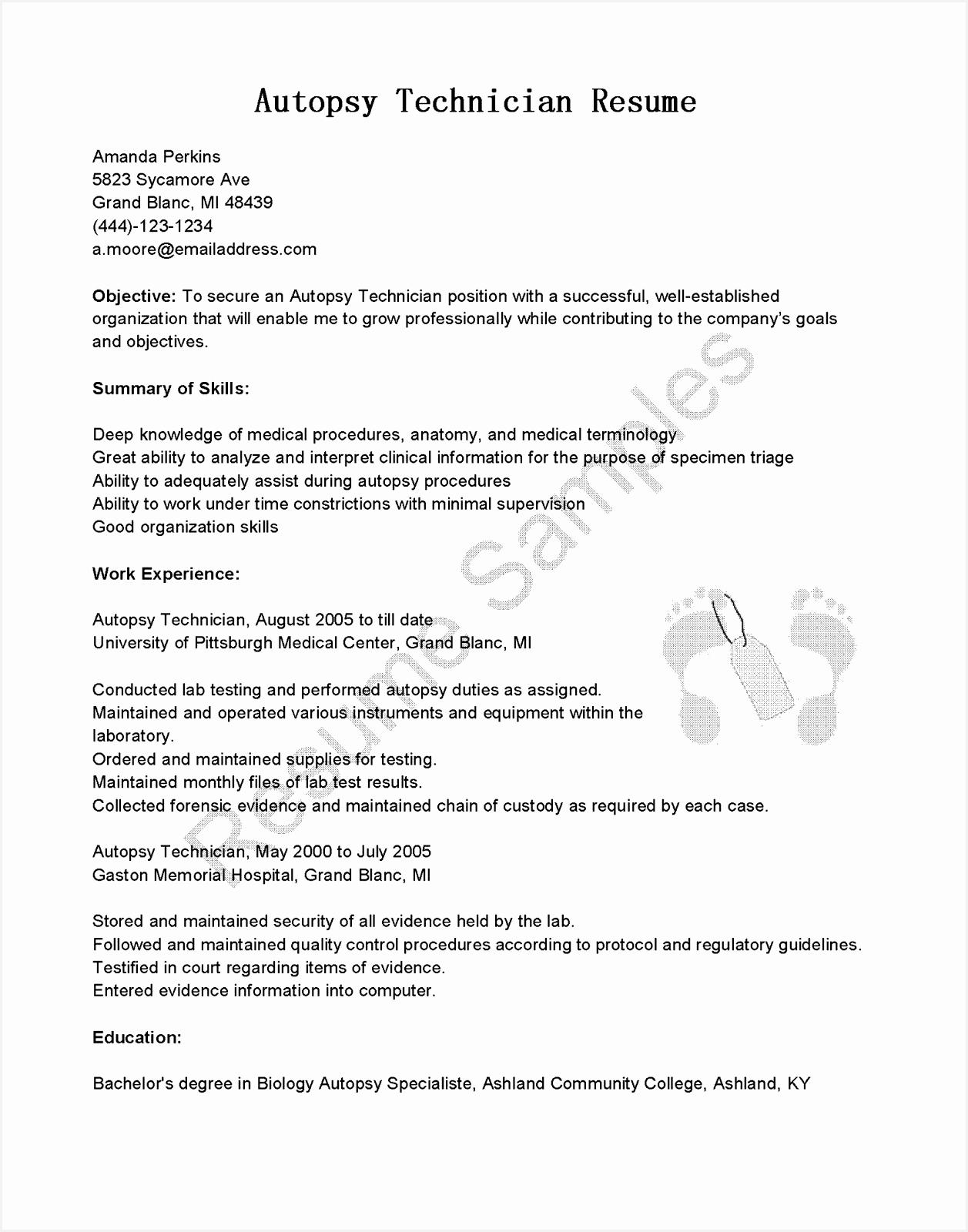 Best Resume Template Fresh Best Pr Resume Template Elegant16001257