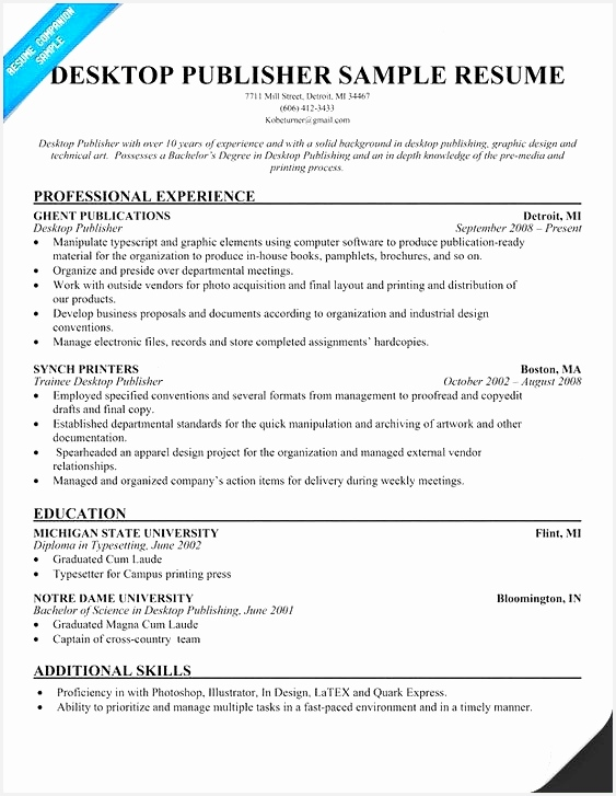 Executive Resume Examples Good Resume Examples 0d Simple Resume A727563