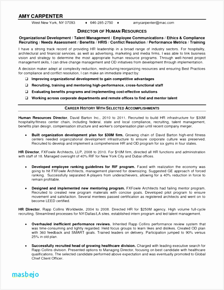 Resume Examples Microsoft Word Free Microsoft Word Resume Templates And Gallery Carpenter Resume930719