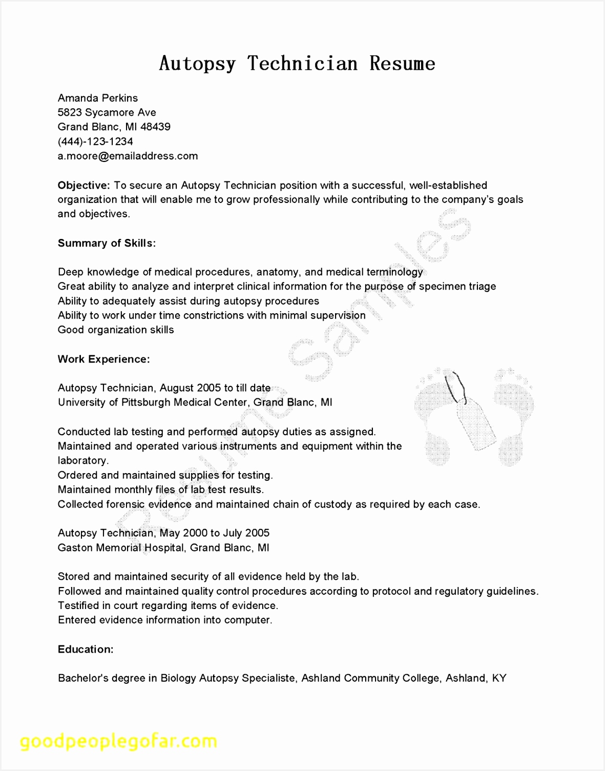 admin executive resume sample awesome executive resume templates word od specialist cover letter lead of admin15041181