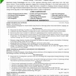 6 Chief Learning Officer Sample Resume