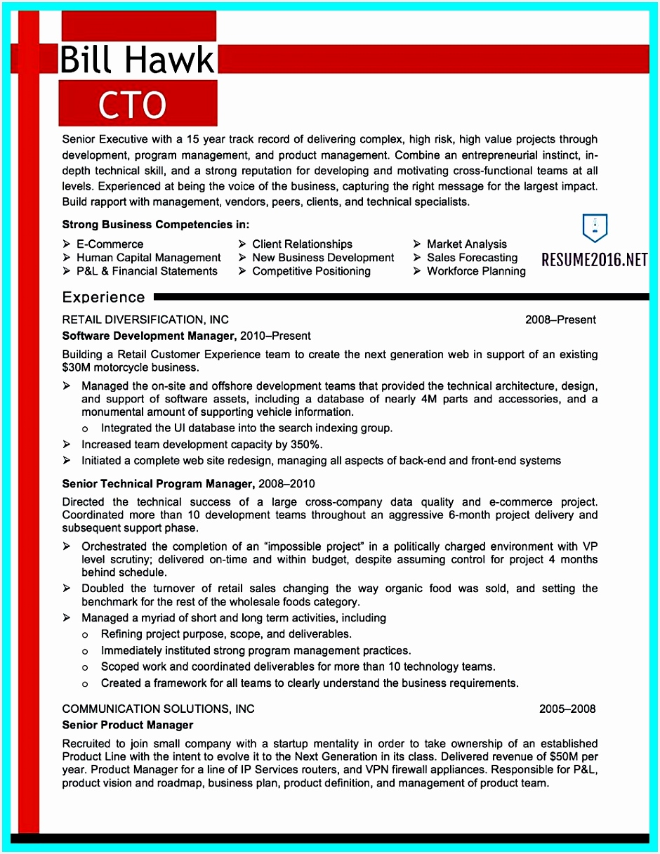 cto resume example chief technology officer1216940