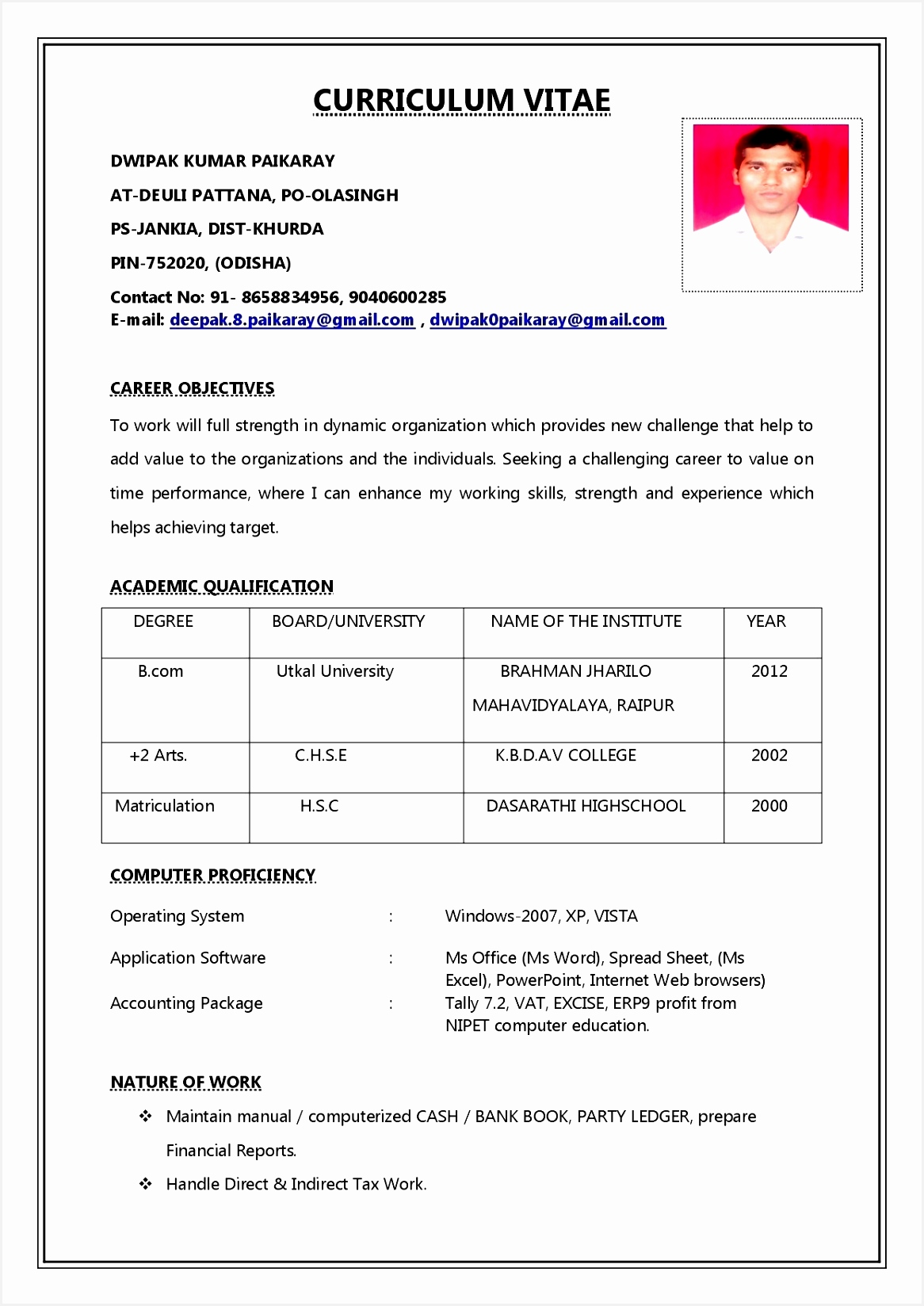 Awesome How Can I Do A Resume Best Resume Examples 0d Sales Resume16481166
