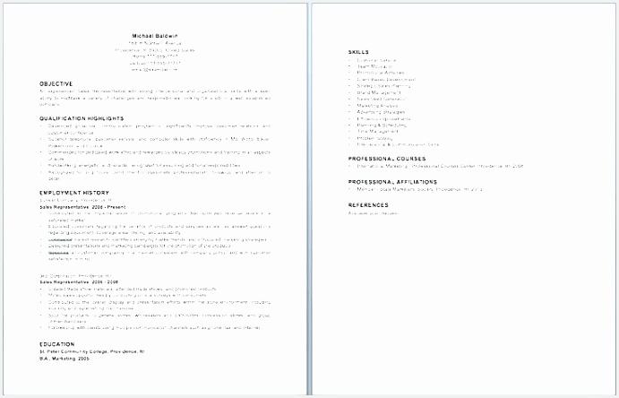 sample zoning manager resume sample zoning enforcement inspector resume salesman resume unique resume ideas resume objective444691