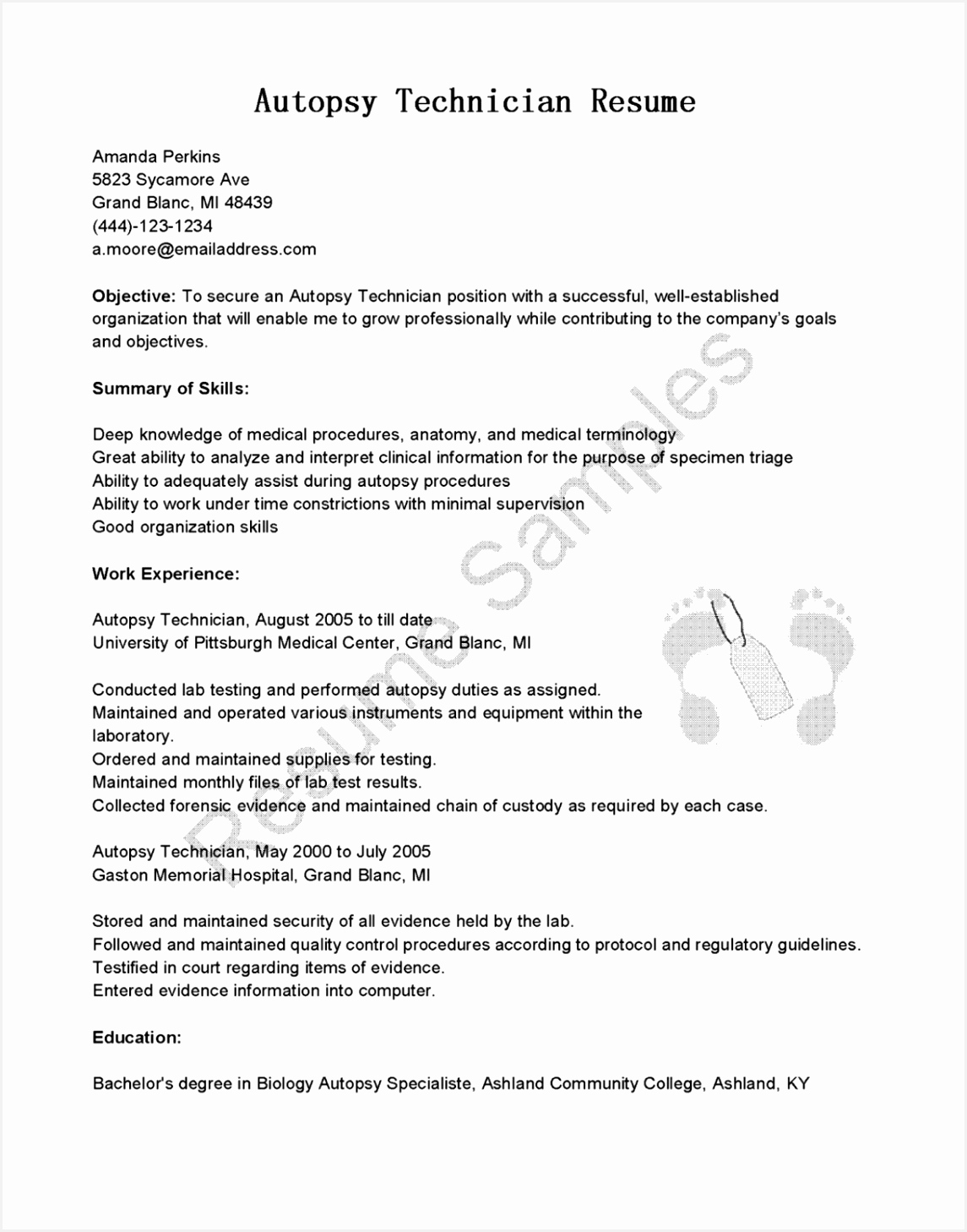 Cv Templates Computer Skills Emshs Fresh Professional Engineer Resume Template — Resumes Project Of 4 Cv Templates Computer Skills
