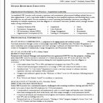 Cv Templates Computer Skills Inu2c Unique Skill Examples for Resume Resume Skills and Apartment Maintenance486376