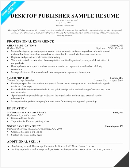 Resume Template Word Free Download Resume Examples Word Professional Resume Examples 0d 683529lhhbt