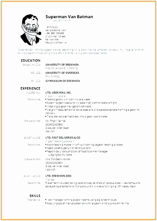 Free Sample Resume Template Erglk Luxury Dental assisting Resume Templates Of Free Sample Resume Template Yrygs Fresh 20 Resume format Examples