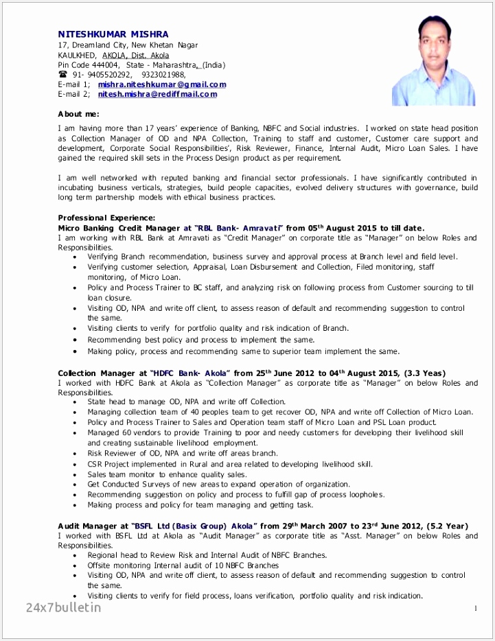 It Auditor Resume New 70 Elegant Internal Auditor Resume Examples Collection 934721ykhbd