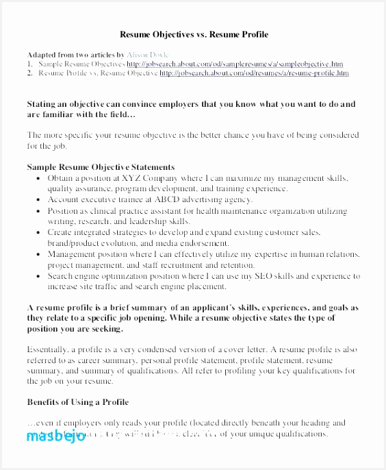 Examples Of Resume Summary Statement Sahrg Beautiful 2 Cv Passion Resume Summary Statement Fresh Examples Resumes Of 9 Examples Of Resume Summary Statement