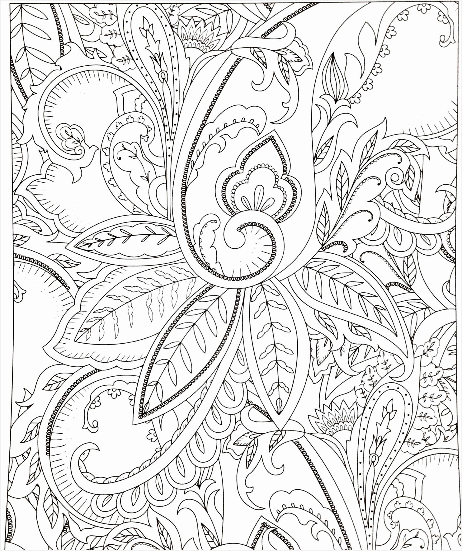 Free Printable Receipts Periodic Free Printable Coloring Christmas Pages Cool Coloring Printables 0d 182015255iDpu