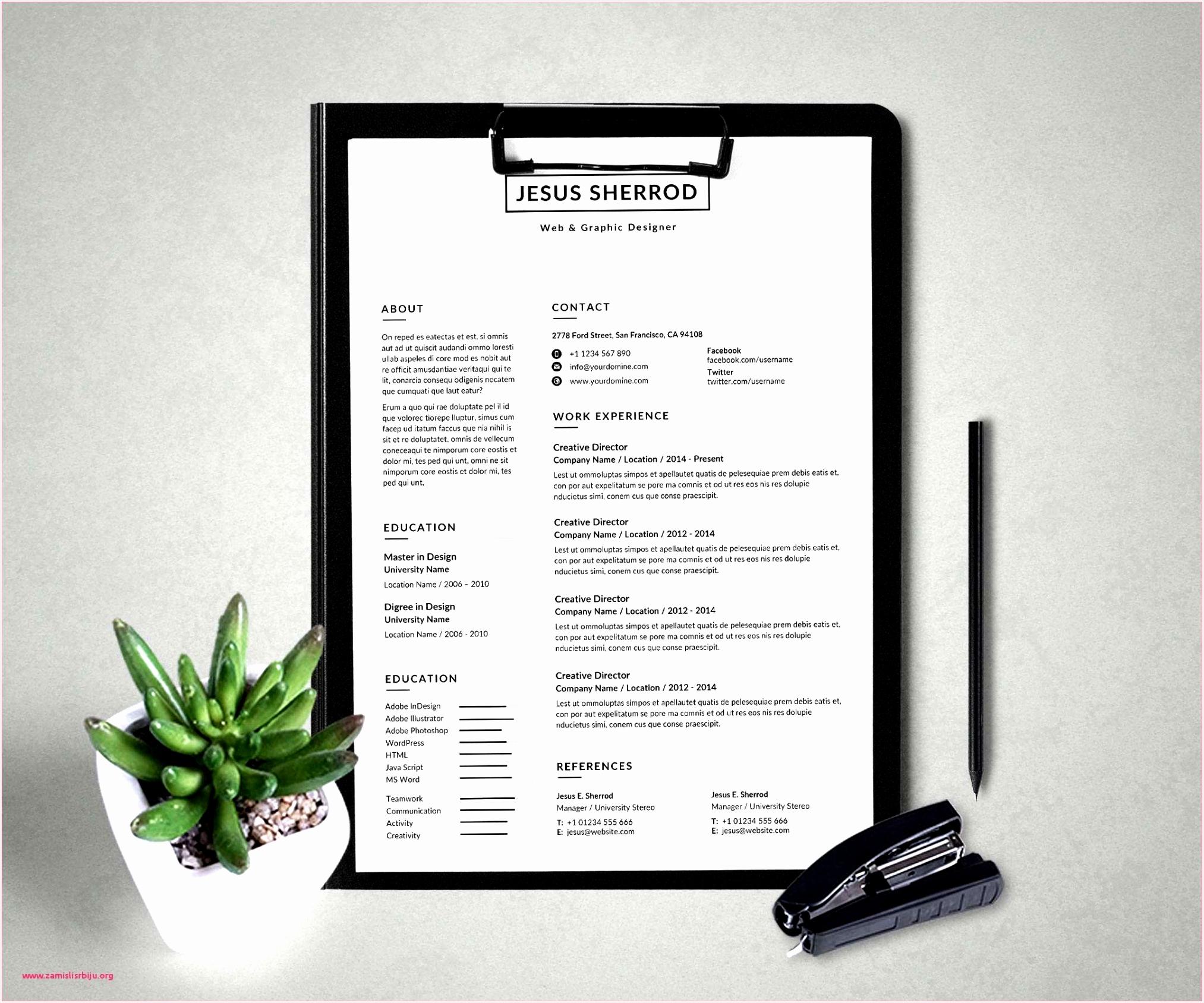 Game Animator Sample Resume Uebfg Beautiful Web Designer Resume Samples Web Developer Resume Examples Awesome Of 5 Game Animator Sample Resume