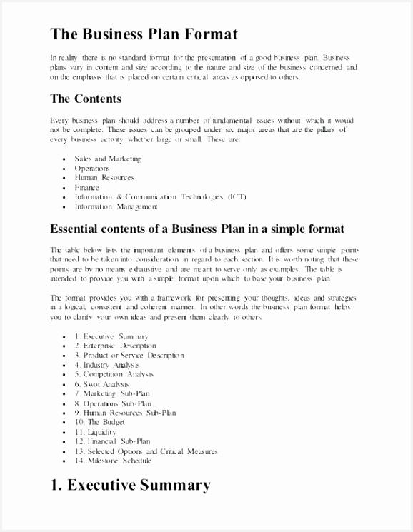 Summary Resume Sample Sflpk Lovely 30 Resume Executive Summary Samples Of 4 Summary Resume Sample