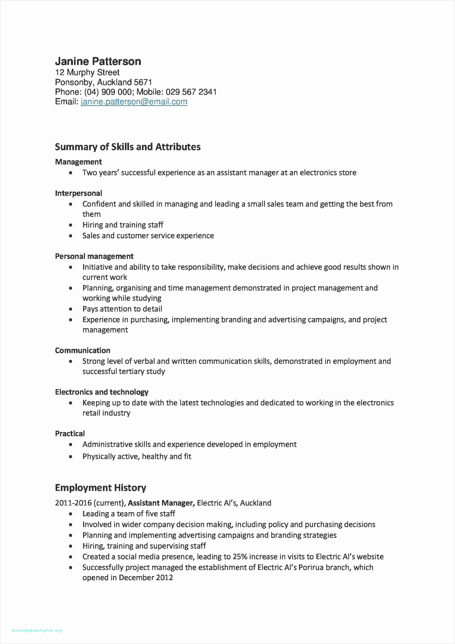 Administrative Sample Resume Kujlb Lovely It Project Manager Resume Examples Professional Cto Resume Examples21981554