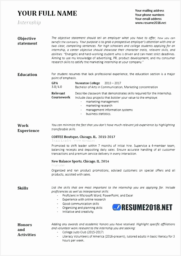 Resumes Examples for Management New format Resume Example Job Resume Unique Bsw Resume 0d Sample 846597hggIj