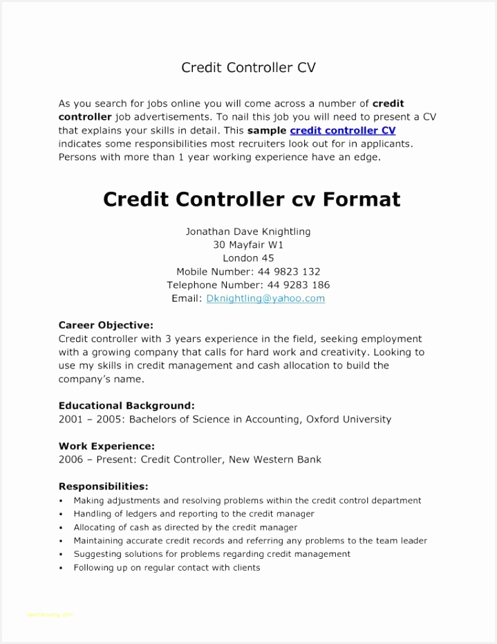 Banking Resume format Cgzke Lovely Professional Cv format Fresh Resume Header Examples Beautiful930719
