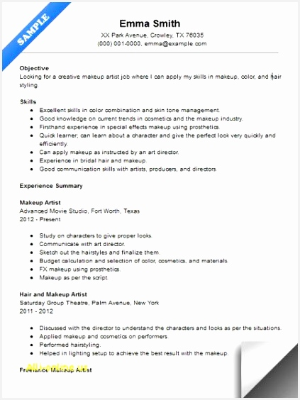 Summary Resume Example Best Cv Examples New Hybrid Resume Template From Resume Examples 0d 564423zYkft