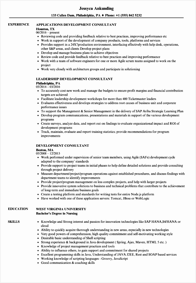 Download Development Consultant Resume Sample as Image file 1165808lqZ5q
