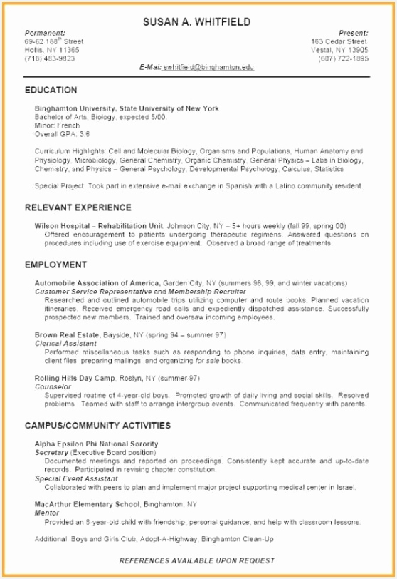 Sample Resume Template Free Lebenslauf It Frisches It Specialist Cv Template Printable Od 812558eocly
