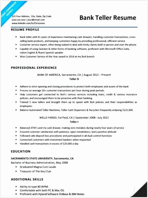 Bank Teller Resume Example Free Profile Resume Examples Profile Resume Examples Unique Cto Resume 0d 667498vjajr
